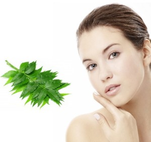 Benefits of Neem products for skin diseases
