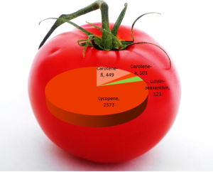 Phytonutrients in tomat png