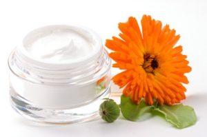 moisturizing face cream and fresh Gerbera flower